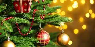'क्रिसमस डे' मा अव बिदा नहुने