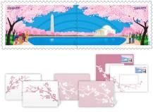 Cherry Blossom Centennial