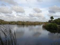 Everglades NP (33)