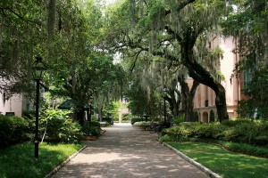 College of Charleston image