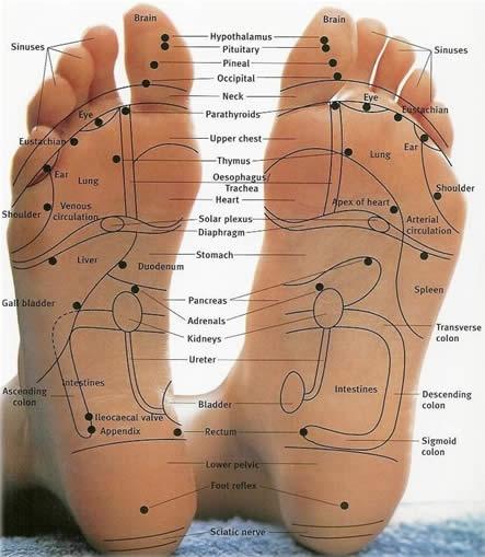 Reflexology-Foot-Chart-10