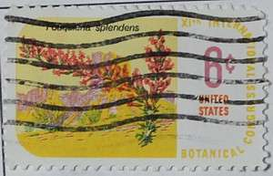 1969 Botanical Congress - Ocotillo 6c
