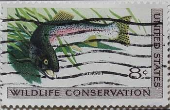 1971 Wildlife Conservation - Trout 8c