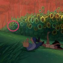 26_-_pocahantas_sunflowers