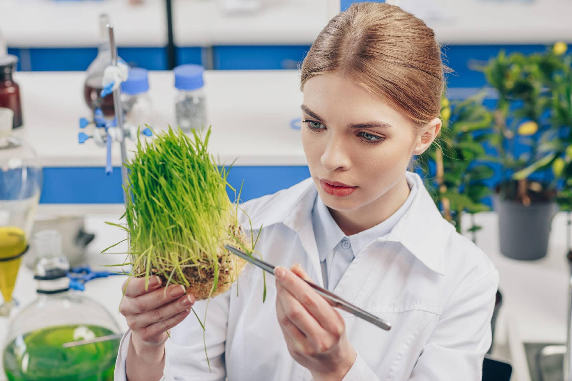Сможешь ли ты осилить этот школьный тест по биологии?