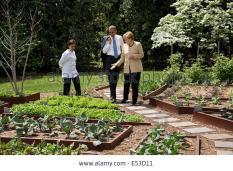us-president-barack-obama-and-chancellor-angela-merkel-of-germany-E53D11