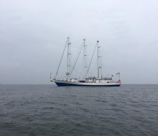 Żaglowiec Oceania zawinął do usteckiego portu morskiego - ustka24.info