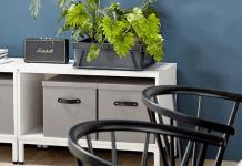 Zielone biura biurami przyszłości - ustka24.info
