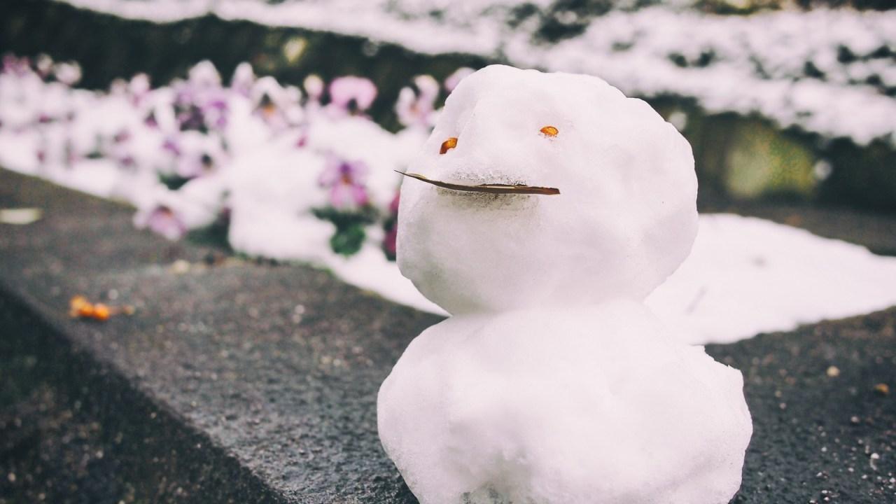 可愛い雪だるま