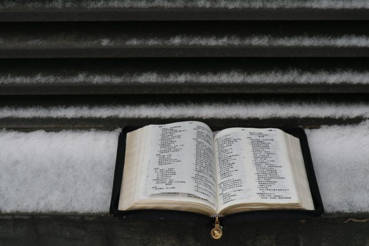 雪の上に置かれた本