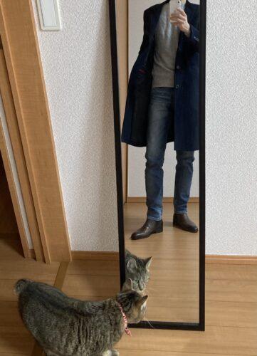 デニムを履いて自撮りした写真