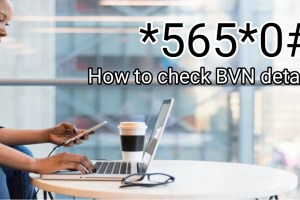 How to check BVN details online