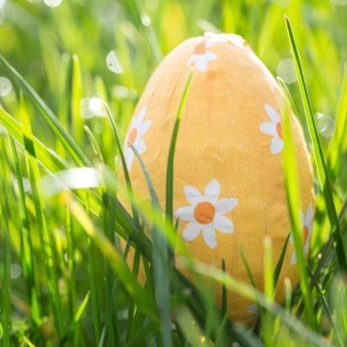 easter-egg-nestled-in-the-grass[1]