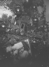 Christmas Decorations with the Holga 120S