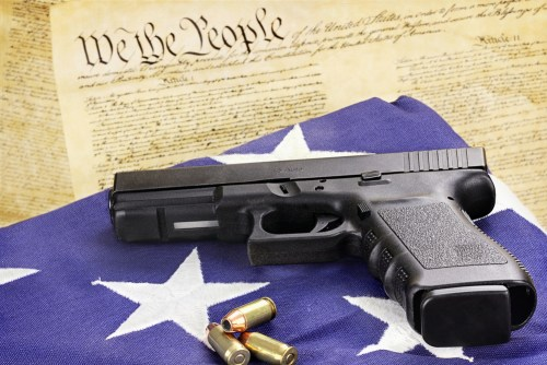 Gun Policy 03