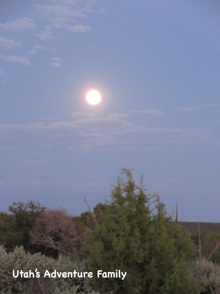 The full moon looked like the sun. It was so bright!