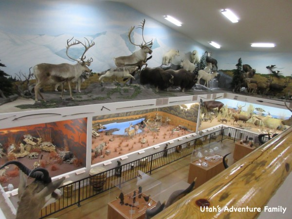 Bryce Canyon Museum 9