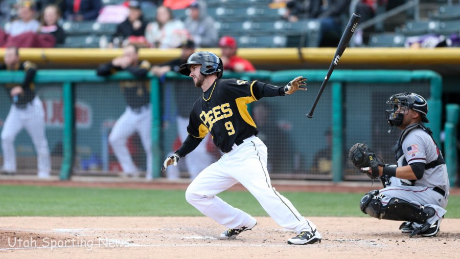 Bees outfielder Shane Robinson (Photo Rob Gray)