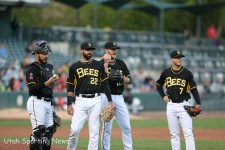 Salt Lake Bees (Photo Rob Gray)