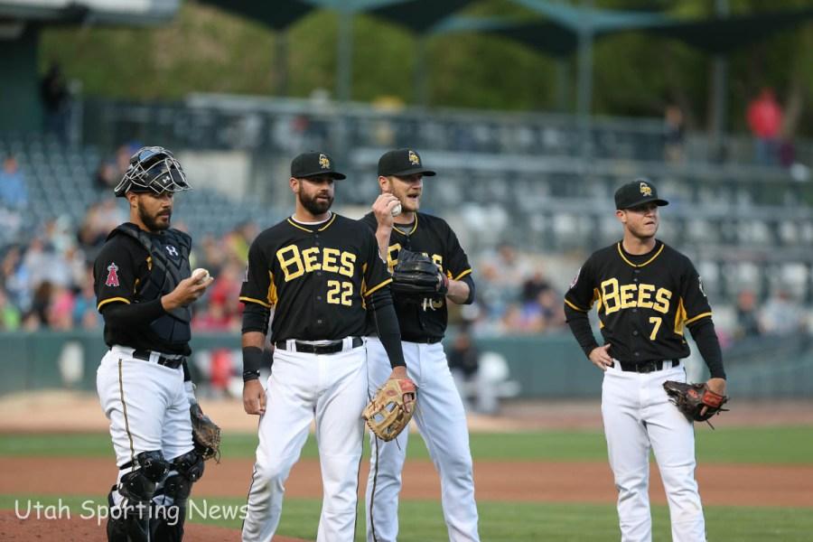Salt Lake Bees (Photo Rob Gray)