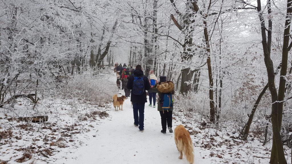 Télen is kutyával