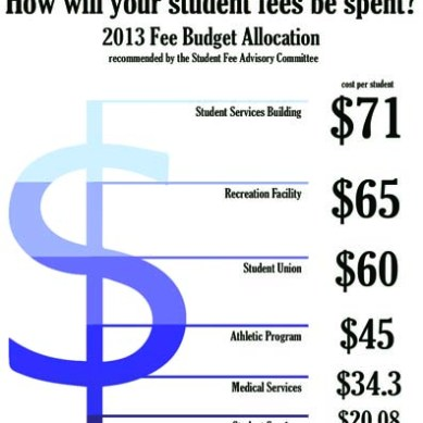 Budget breakdown: 2013 fee budget allocation