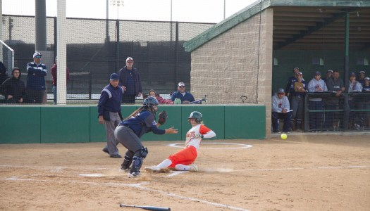 Softball makes comeback