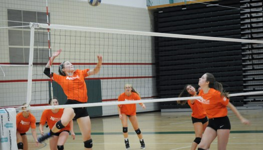 Volleyball team receives fourth academic honor