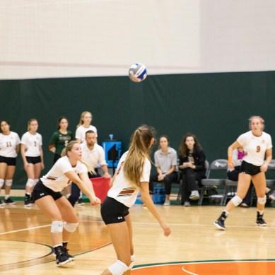 Volleyball, soccer gain winning streaks