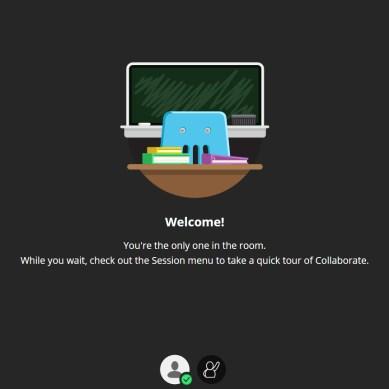 How UTD professors are adapting to online classes