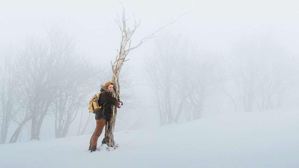 Krama träd - ett sätt att stärka din relation till naturen.