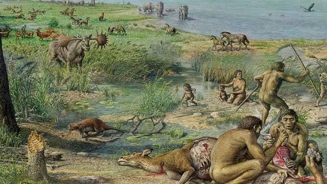 La evolución del ser humano se dio principalmente en el paleolítico.