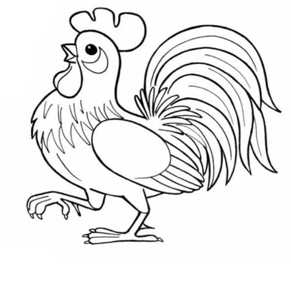 Раскраски Куры, петухи, цыплята