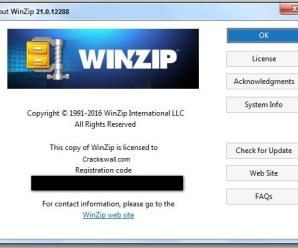 WinZip Pro 21.0.12288 Crack