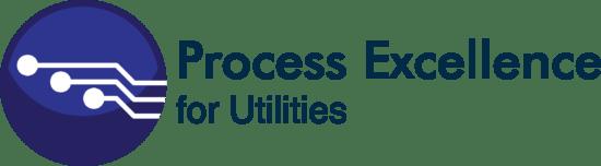Process Excellence Logo