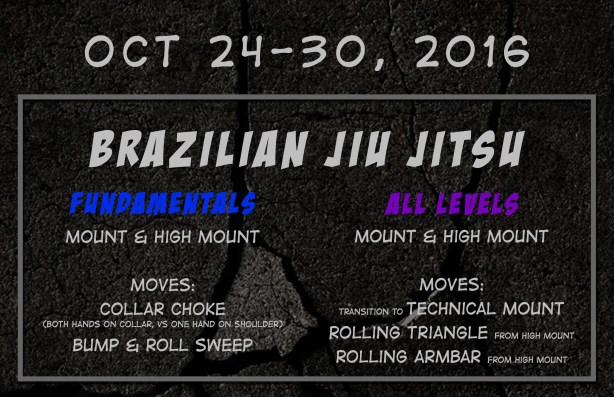 weekly-curriculum-20161024-bjj