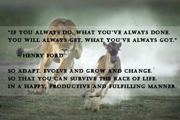 lion-vs-gazelle quote.jpg