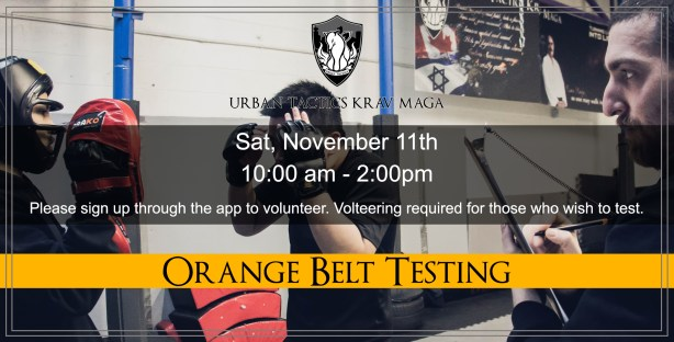 November 11th Orange Belt testing
