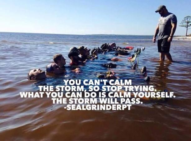 Calm The storm.jpg