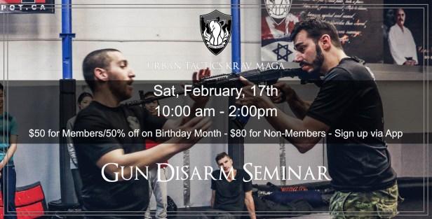 Gun Disarm Seminar Feb 2017