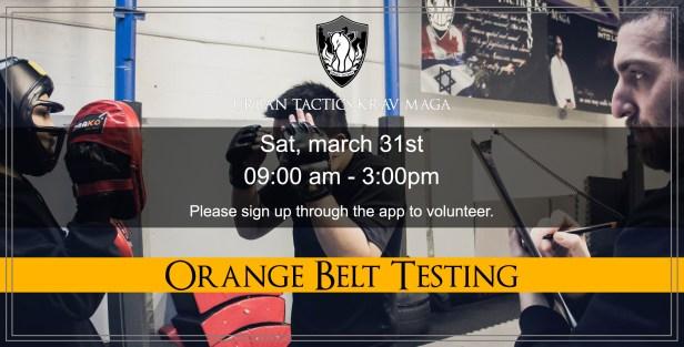 March 31st Orange Belt Test
