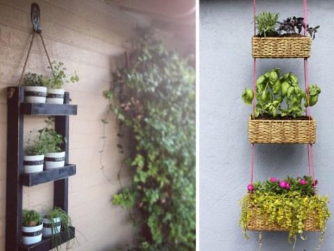dein kreativer garten urban gardening: kreative ideen für den gemüseanbau auf