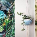 Mehr Als Nur Deko 13 Kreative Ideen Fur Mehr Grun In Der Wohnung Utopia De