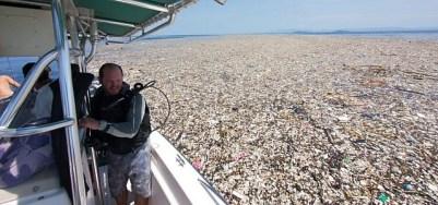 Plastik Plastikmüll Meer Karibik