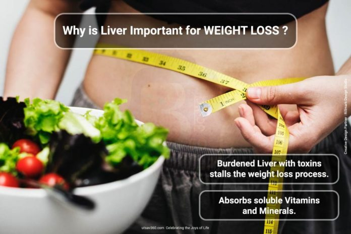 reasons why liver is important for weight loss