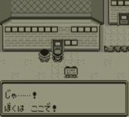 pokemon-green5-022