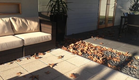leaves-on-ground-sml