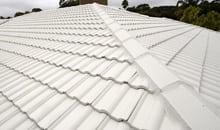 Roof Rerstoration