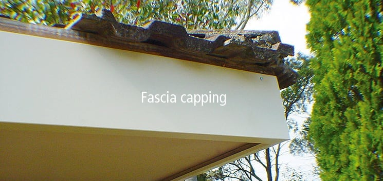 Fascia-only_745