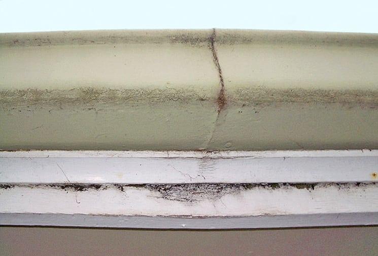 Roof leaks maintenance for Leaking roof gutter